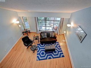 Photo 4: 415 1005 McKenzie Avenue in VICTORIA: SE Quadra Condo Apartment for sale (Saanich East)  : MLS®# 384819