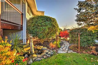 Photo 18: 4299 Panorama Pl in VICTORIA: SE Lake Hill Single Family Detached for sale (Saanich East)  : MLS®# 774088