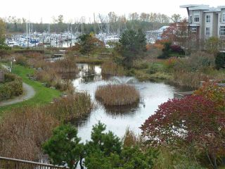 """Photo 8: 304 5800 ANDREWS Road in Richmond: Steveston South Condo for sale in """"Tje Villas at Southcove"""" : MLS®# R2241418"""