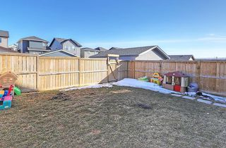 Photo 36: 223 EVANSTON Way NW in Calgary: Evanston House for sale : MLS®# C4178765