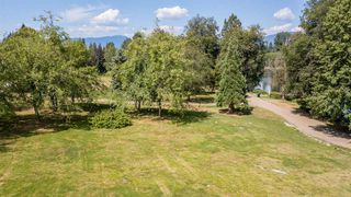 Photo 5: 1213 COTTONWOOD Avenue in Coquitlam: Central Coquitlam House for sale : MLS®# R2292834