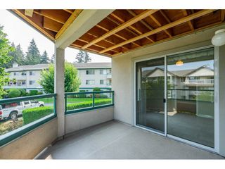 "Photo 17: 244 2451 GLADWIN Road in Abbotsford: Abbotsford West Condo for sale in ""Centennial Court"" : MLS®# R2297582"