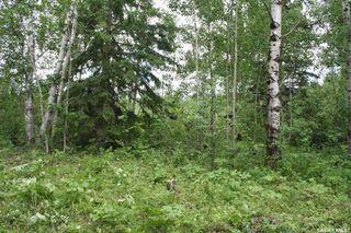 Photo 1: Lot 8 Bl 5 Rural Address in Cowan Lake: Lot/Land for sale : MLS®# SK746461