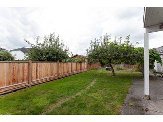 "Photo 18: 11671 232B Street in Maple Ridge: Cottonwood MR House for sale in ""COTTONWOOD"" : MLS®# R2305358"