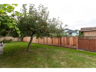 "Photo 19: 11671 232B Street in Maple Ridge: Cottonwood MR House for sale in ""COTTONWOOD"" : MLS®# R2305358"