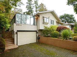 Photo 20: 3654 Cedar Hill Rd in VICTORIA: SE Cedar Hill Single Family Detached for sale (Saanich East)  : MLS®# 799917