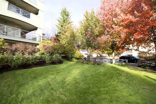 "Photo 18: 207 20110 MICHAUD Crescent in Langley: Langley City Condo for sale in ""Regency Terrace"" : MLS®# R2318136"
