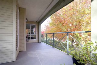 "Photo 13: 207 20110 MICHAUD Crescent in Langley: Langley City Condo for sale in ""Regency Terrace"" : MLS®# R2318136"