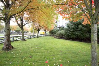 "Photo 19: 207 20110 MICHAUD Crescent in Langley: Langley City Condo for sale in ""Regency Terrace"" : MLS®# R2318136"