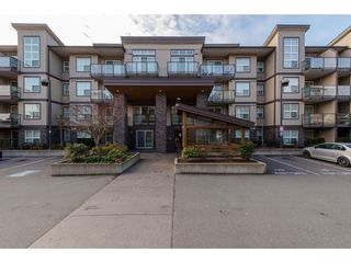 "Main Photo: 218 30515 CARDINAL Avenue in Abbotsford: Abbotsford West Condo for sale in ""Tamarind"" : MLS®# R2333339"