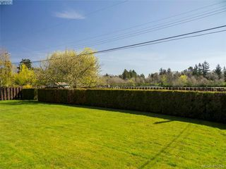 Photo 3: 3489 Henderson Rd in VICTORIA: OB Henderson House for sale (Oak Bay)  : MLS®# 805345