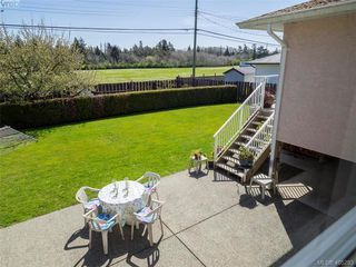 Photo 4: 3489 Henderson Rd in VICTORIA: OB Henderson House for sale (Oak Bay)  : MLS®# 805345