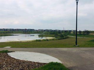 Photo 26: 3063 Carpenter Landing in Edmonton: Zone 55 House for sale : MLS®# E4142857