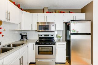 Main Photo: 11719 28 Avenue in Edmonton: Zone 16 House for sale : MLS®# E4143988