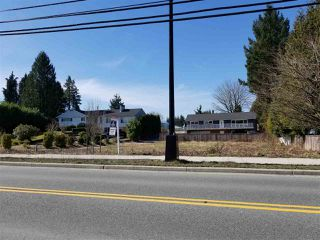 Photo 14: 12135 203 Street in Maple Ridge: Northwest Maple Ridge Land for sale : MLS®# R2350746