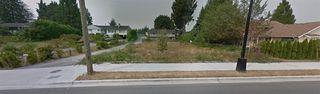 Photo 3: 12135 203 Street in Maple Ridge: Northwest Maple Ridge Land for sale : MLS®# R2350746