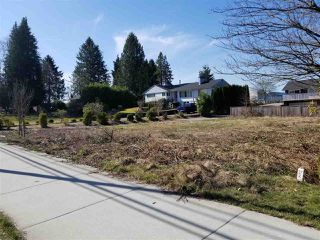 Photo 10: 12135 203 Street in Maple Ridge: Northwest Maple Ridge Land for sale : MLS®# R2350746
