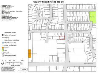 Photo 18: 12135 203 Street in Maple Ridge: Northwest Maple Ridge Land for sale : MLS®# R2350746