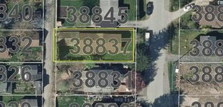 "Photo 11: 38837 BRITANNIA Way in Squamish: Dentville House for sale in ""Dentville"" : MLS®# R2360257"