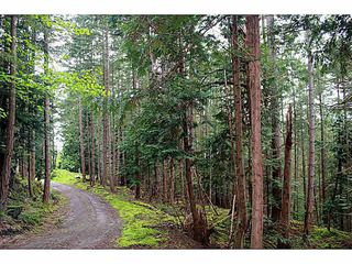 Photo 9: LT 11 GAINES ROAD: Saturna Island Land for sale (Islands-Van. & Gulf)  : MLS®# V1126843