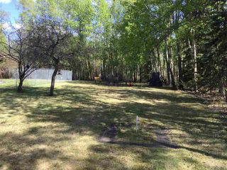 Photo 4: 52217 RGE RD 20: Rural Parkland County House for sale : MLS®# E4140316
