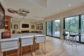 Photo 20: 2450 CAMERON RAVINE Drive in Edmonton: Zone 20 House for sale : MLS®# E4175544