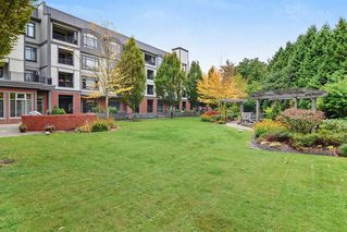 "Photo 19: 211 8880 202 Street in Langley: Walnut Grove Condo for sale in ""The Residence"" : MLS®# R2444282"