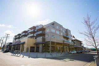 Photo 17: 155 6168 LONDON ROAD in Richmond: Steveston South Condo for sale : MLS®# R2249073
