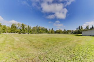 "Photo 4: 25965 24 Avenue in Langley: Otter District House for sale in ""Willpower Stables"" : MLS®# R2503545"