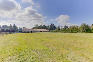 "Photo 3: 25965 24 Avenue in Langley: Otter District House for sale in ""Willpower Stables"" : MLS®# R2503545"