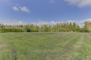"Photo 5: 25965 24 Avenue in Langley: Otter District House for sale in ""Willpower Stables"" : MLS®# R2503545"