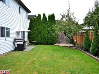 Photo 9: 21240 92ND Avenue in Langley: Walnut Grove House for sale : MLS®# F1123574