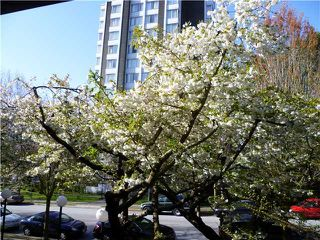 Photo 9: 210 1422 E 3RD Avenue in Vancouver: Grandview VE Condo for sale (Vancouver East)  : MLS®# V969197