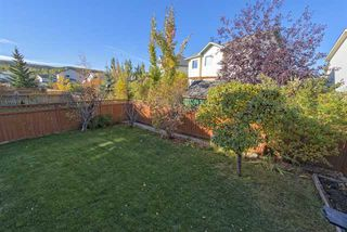 Photo 19: 278 VALLEY BROOK CIR NW in Calgary: Valley Ridge Residential Detached Single Family  : MLS®# C3639142