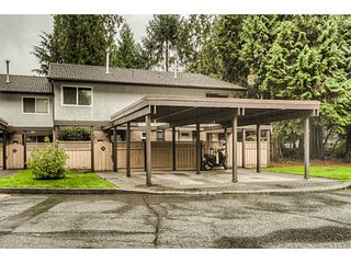 """Photo 1: 51 3046 COAST MERIDIAN Road in Port Coquitlam: Birchland Manor Townhouse for sale in """"WOODSIDE ESTATES"""" : MLS®# V1092086"""