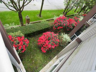 Photo 5: 202 4768 53RD Street in Ladner: Delta Manor Condo for sale : MLS®# V1122828