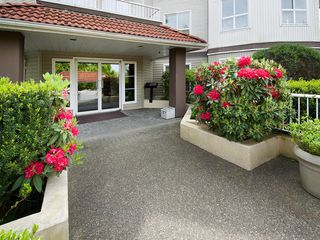 Photo 13: 202 4768 53RD Street in Ladner: Delta Manor Condo for sale : MLS®# V1122828
