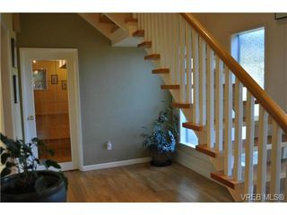 Photo 13: 3942 N Shorncliffe Rd in VICTORIA: SE Cedar Hill Single Family Detached for sale (Saanich East)  : MLS®# 740391