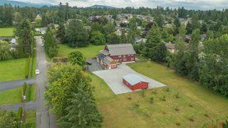 "Photo 19: 20232 POWELL Avenue in Maple Ridge: Northwest Maple Ridge House for sale in ""WEST MAPLE RIDGE"" : MLS®# R2106394"