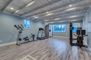 "Photo 14: 20232 POWELL Avenue in Maple Ridge: Northwest Maple Ridge House for sale in ""WEST MAPLE RIDGE"" : MLS®# R2106394"
