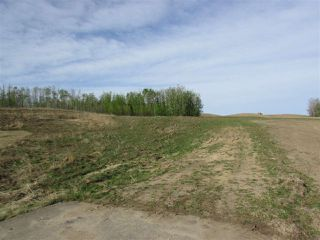 Photo 20: 9 53214 RGE RD 13 Road: Rural Parkland County Rural Land/Vacant Lot for sale : MLS®# E4061202