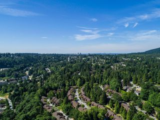 Photo 49: 1623 GORE Street in Port Moody: College Park PM House for sale : MLS®# R2186517
