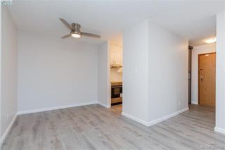 Photo 4: 207 1630 Quadra St in VICTORIA: Vi Central Park Condo Apartment for sale (Victoria)  : MLS®# 768571