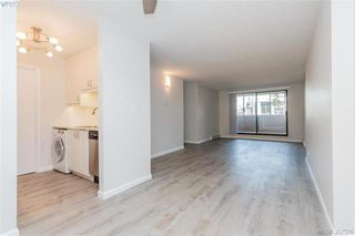 Photo 5: 207 1630 Quadra St in VICTORIA: Vi Central Park Condo Apartment for sale (Victoria)  : MLS®# 768571