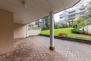 Photo 10: 101 11605 227 Street in Maple Ridge: East Central Condo for sale : MLS®# R2230629