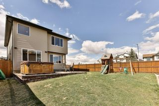 Photo 29: 2 CITADEL ESTATES Heights NW in Calgary: Citadel House for sale : MLS®# C4183849