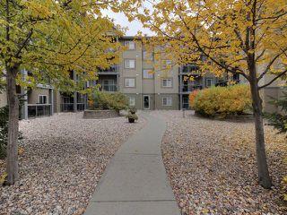 Photo 27: 411 279 SUDER GREENS Drive in Edmonton: Zone 58 Condo for sale : MLS®# E4130681