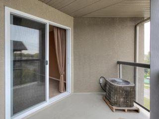 Photo 24: 411 279 SUDER GREENS Drive in Edmonton: Zone 58 Condo for sale : MLS®# E4130681
