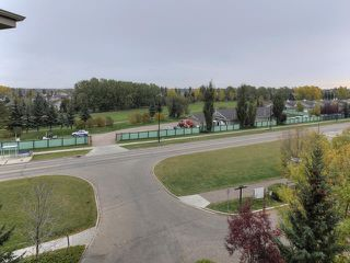 Photo 26: 411 279 SUDER GREENS Drive in Edmonton: Zone 58 Condo for sale : MLS®# E4130681