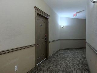 Photo 3: 411 279 SUDER GREENS Drive in Edmonton: Zone 58 Condo for sale : MLS®# E4130681